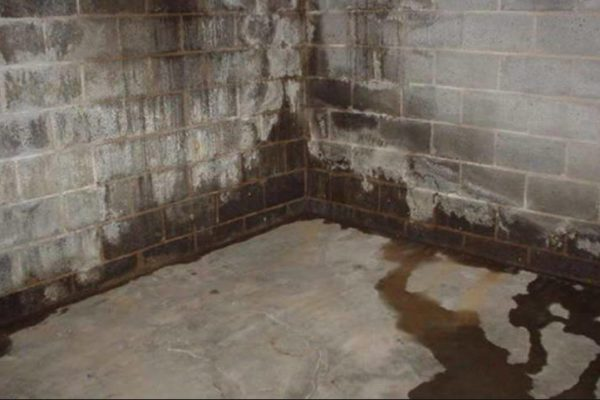 prix au m du traitement humidit d 39 une cave par cuvelage en belgique. Black Bedroom Furniture Sets. Home Design Ideas